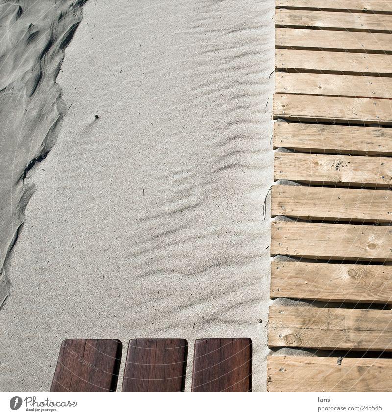 Beach Wood Landscape Lanes & trails Sand Environment Brown Footbridge Wooden board