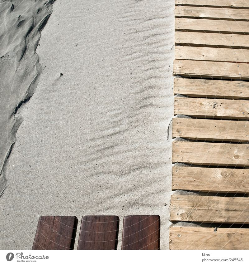 Spiekeroog Noble and... Beach Environment Landscape Sand Lanes & trails Wood Brown Footbridge Wooden board Colour photo Exterior shot Detail Pattern