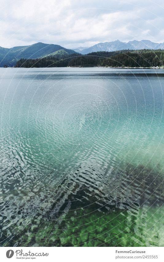Mountain lake with cristal clear water in the alps Nature Lake Alps Clarity Turquoise Water Colour photo Exterior shot Deserted Copy Space middle