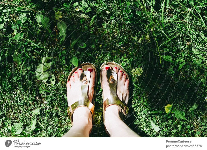 Feet of a woman wearing sandals Leisure and hobbies Sandal Shuffle Glittering Lawn Meadow Nail polish Sunbeam Summer Summery Footwear Garden Park Colour photo