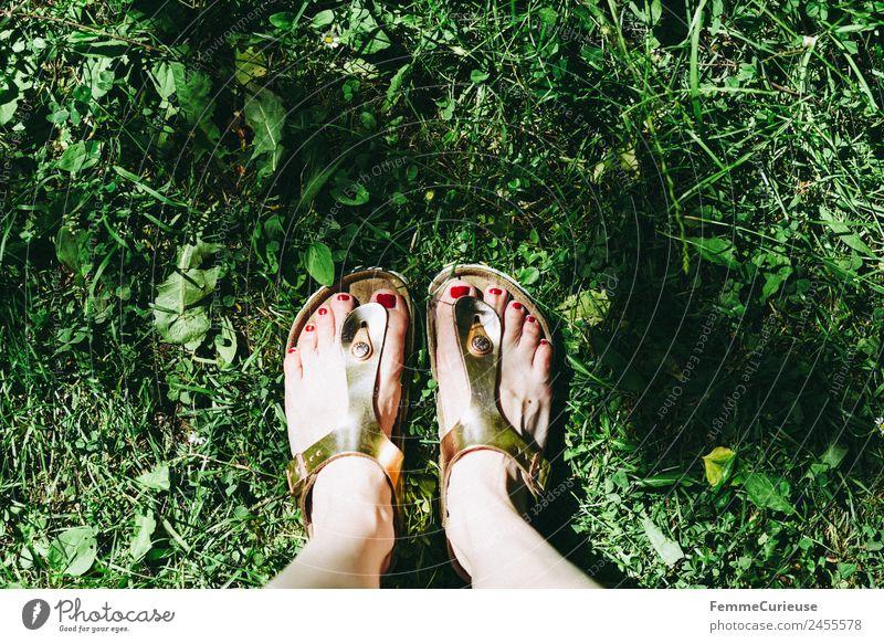 Summer Meadow Garden Feet Leisure and hobbies Park Glittering Footwear Lawn Summery Sandal Nail polish Shuffle
