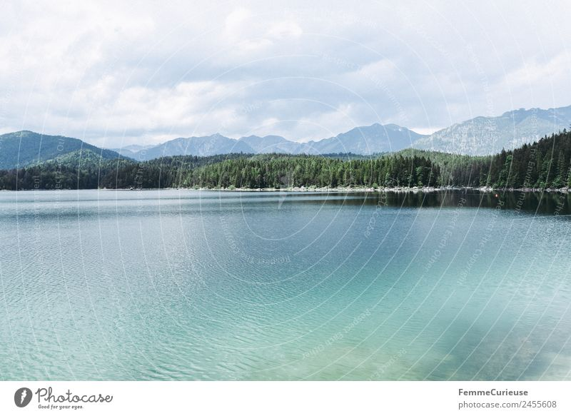 Mountain lake with cristal clear water in the alps Nature Clarity Turquoise Coniferous forest Alps Sunbeam Summer Lake Colour photo Exterior shot Deserted