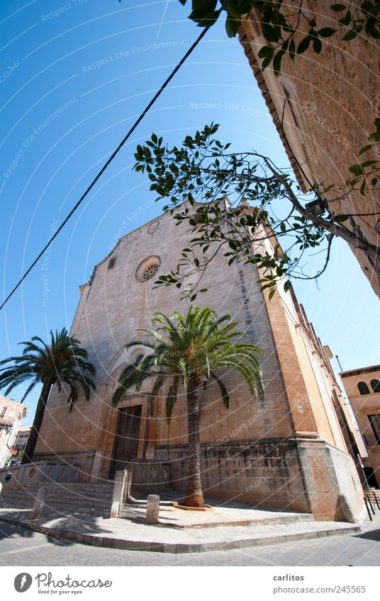 Sant Andreu Sky Summer Beautiful weather Tree Palm tree Small Town Downtown Church Building Wall (barrier) Wall (building) Facade Tourist Attraction Old