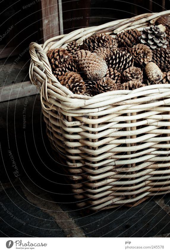Dark Brown Decoration Dry Door handle Basket Full Fir cone Reticular Natural material