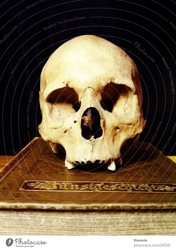 Book Things Obscure Past Ghosts & Spectres  Mystic Fairy tale Ancient Death's head