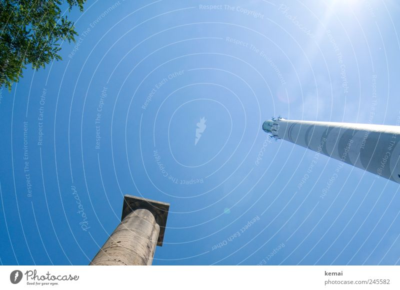 Sky Nature Old Tree Plant Summer Leaf Animal Tall Large Tower Beautiful weather Column Chimney Gigantic Thermal power station