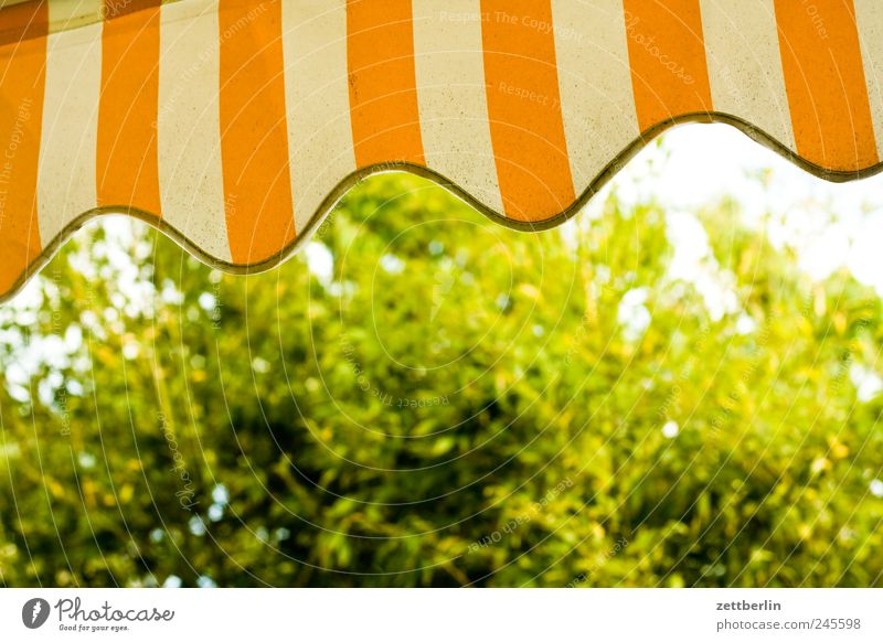 awning Vacation & Travel Garden Environment Nature Climate Climate change Weather Beautiful weather Contentment Garden plot wallroth Sun blind