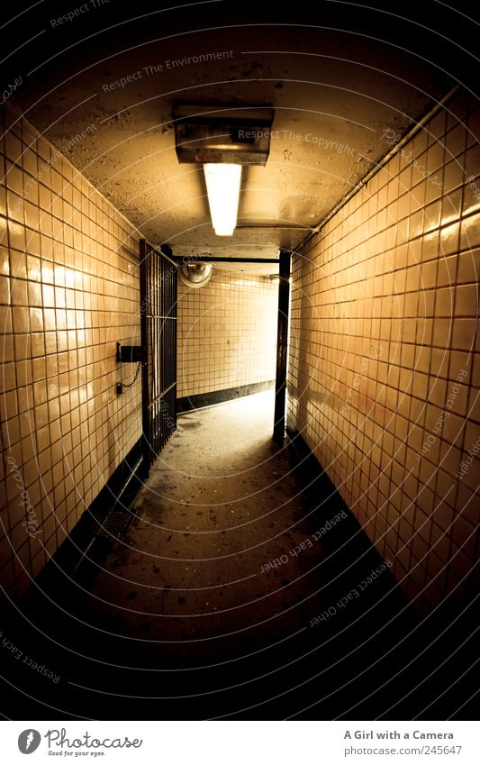 Black Yellow Dark Wall (building) Lanes & trails Wall (barrier) Building Lighting Gold Dirty Glittering Illuminate USA Manmade structures Under Tile