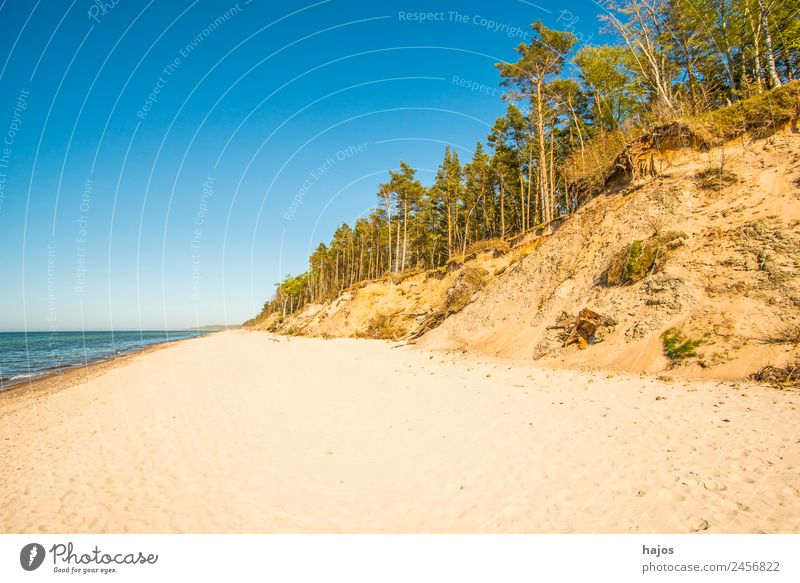 Beach at the Polish Baltic Sea coast Vacation & Travel Sand Reef Tourism Wild Dune Tree Empty far Loneliness Caribbean Sea Nature reserve Deserted paradise