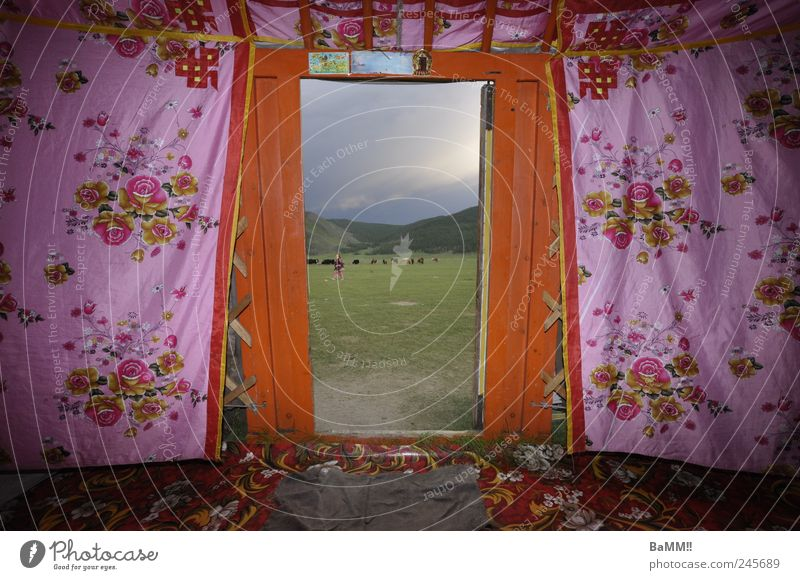 door to the world Adventure Far-off places Living or residing Decoration Hill Steppe Mongolia Hut yurt Door Doormat Herd Kitsch Pink Identity Nomade Freedom