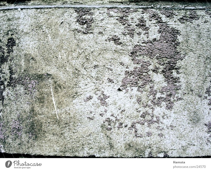 old house wall Wall (building) Plaster Decline Broken Flake off Background picture Gray Photographic technology Old Close-up