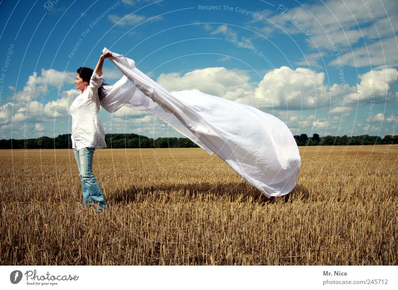 Woman Sky Nature White Summer Clouds Freedom Landscape Environment Bright Adults Power Field Wind Fresh Climate