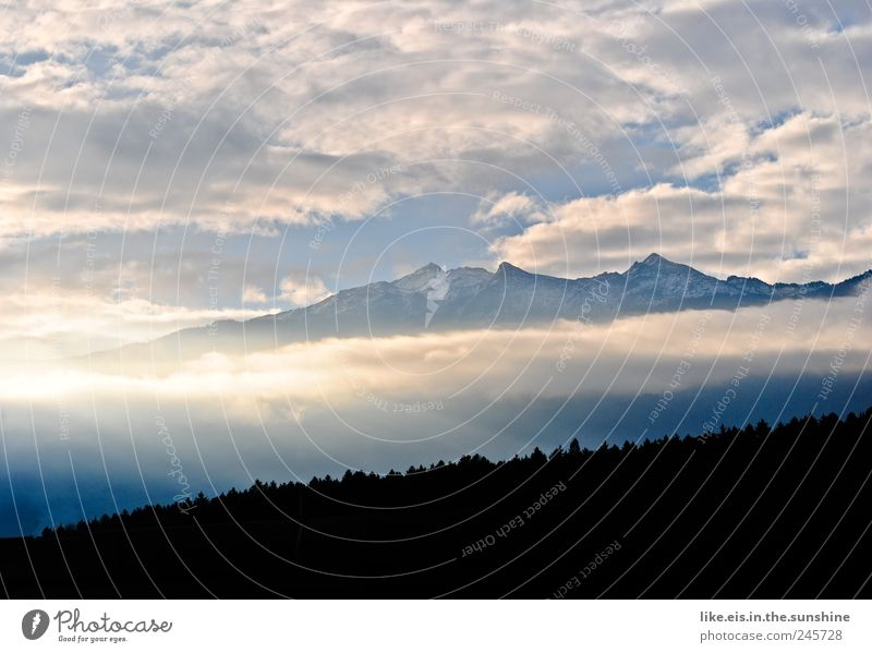 Good morning from Tyrol! Environment Nature Landscape Sky Clouds Climate Weather Beautiful weather Fog Tree Forest Hill Alps Mountain Peak Snowcapped peak