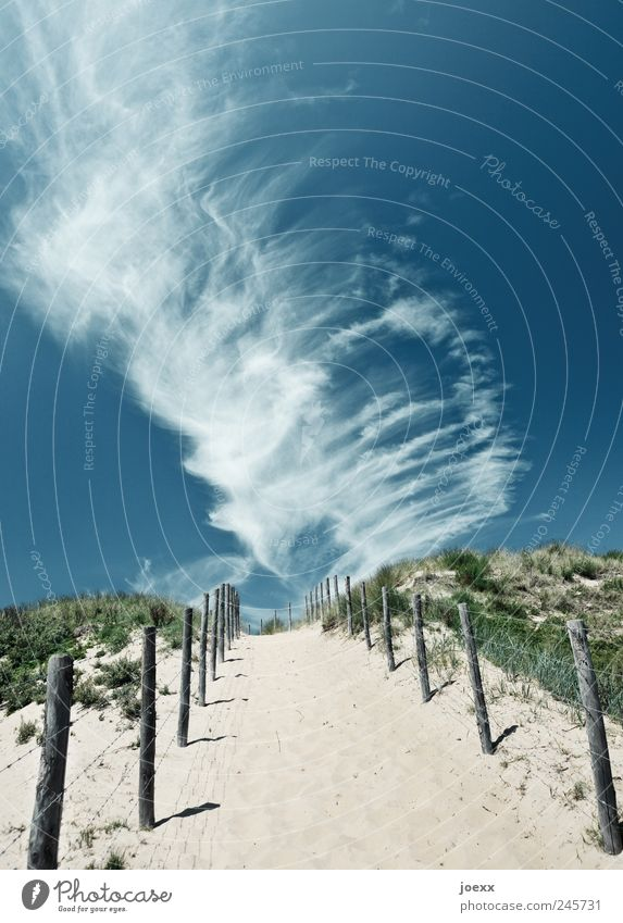 Sky Nature White Green Blue Summer Vacation & Travel Clouds Freedom Grass Landscape Gray Lanes & trails Sand Air Trip