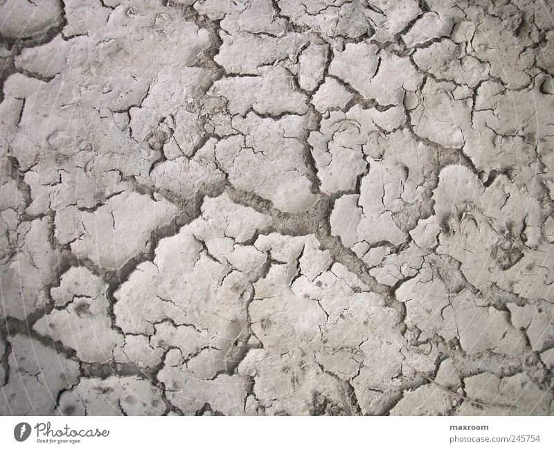 over Earth Drought Dry Thirst Background picture Fertile Fear Limitation Lust Priority Colour photo Exterior shot Day Light