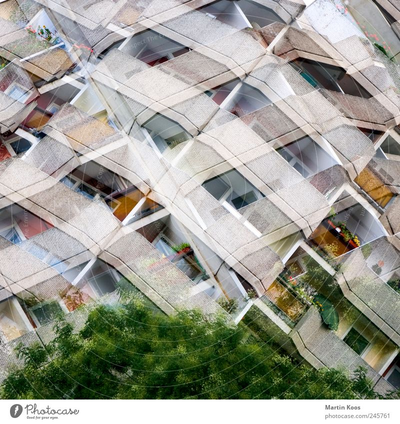 Tree City House (Residential Structure) Window Gray Building Architecture Concrete Facade High-rise Balcony Prefab construction Ornament