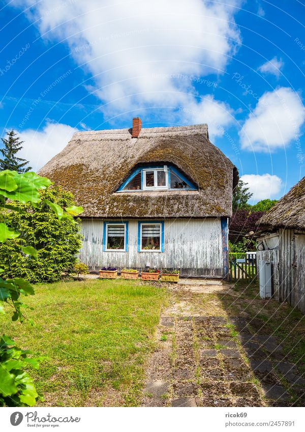 Old building on the Fischland-Darß in Wiek Relaxation Vacation & Travel Tourism House (Residential Structure) Clouds Weather Tree Grass Building Architecture