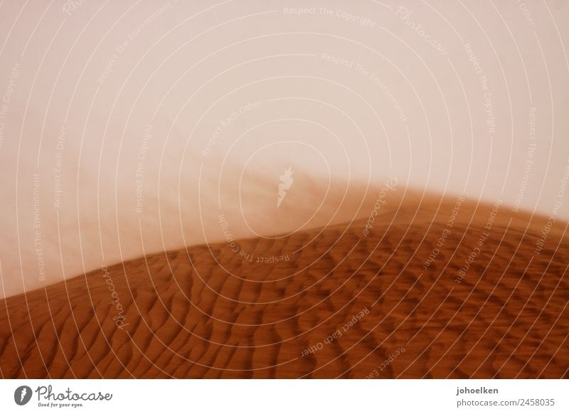 puppete Landscape Sand Wind Gale Waves Desert Sahara Africa Deserted Line Large Hot Dry Loneliness Threat Environment Blow Sandstorm Dune Adventure Colour photo