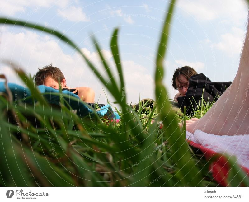 sunbathing lawn Meadow Leisure and hobbies Grass Group Nature Relaxation Sky