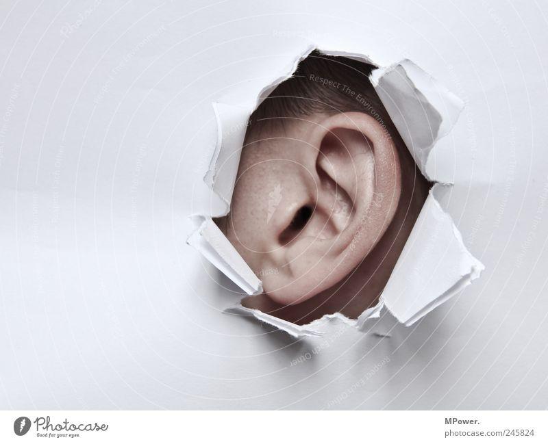 listen in Skin Human being Masculine Adults Head Ear 1 Paper Listening Threat Creepy Broken Brown White Fear Hollow Tear open Voyeurism Police state Central