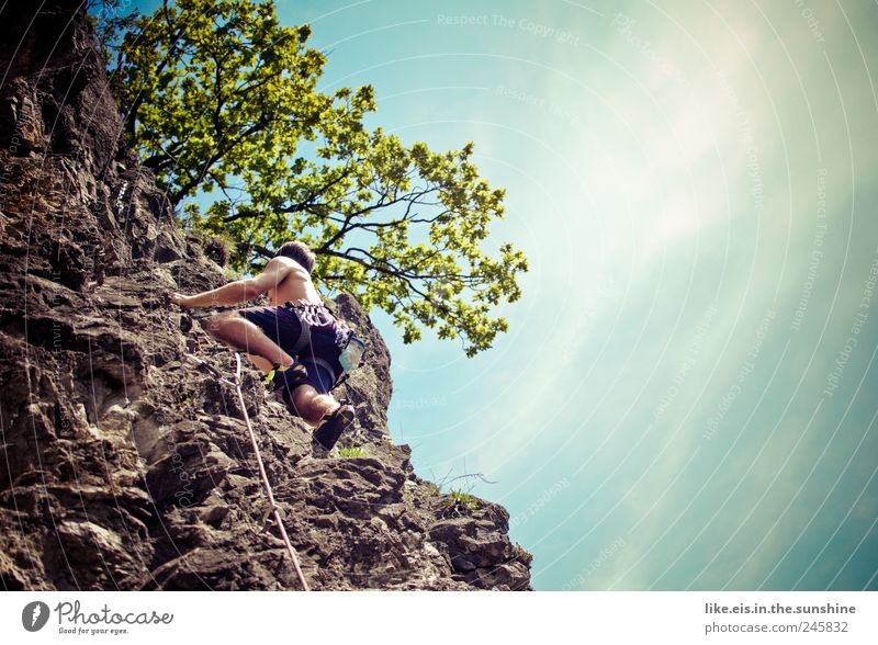 Human being Man Nature Plant Summer Adults Far-off places Life Freedom Mountain Power Leisure and hobbies Rock Tall Masculine Rope