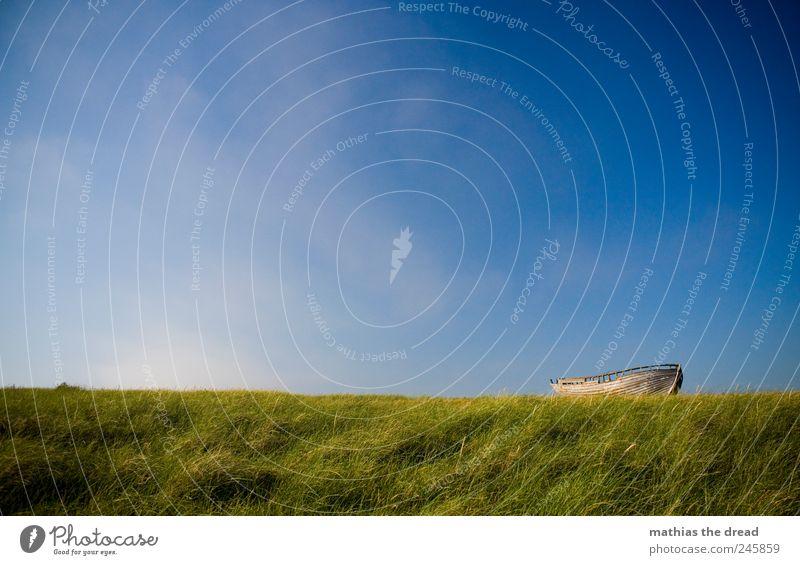 Sky Nature Old Beautiful Plant Summer Clouds Meadow Grass Landscape Environment Air Wind Horizon Lie Broken