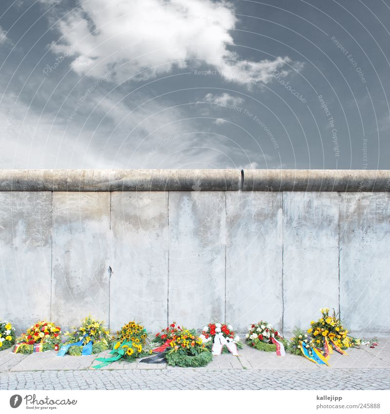 Flower Wall (building) Berlin Freedom Wall (barrier) Sadness Concrete Grief Sidewalk Past Monument Border GDR Barrier Captured Politics and state