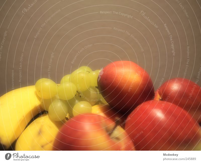 White Green Red Yellow Nutrition Gray Bright Brown Food Fruit Gold Fresh Lie Sweet Round Authentic
