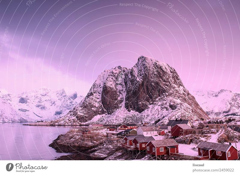 reine-lofoten II Nature Vacation & Travel Landscape Tree Ocean Relaxation House (Residential Structure) Calm Winter Mountain Coast Snow Rock Snowfall