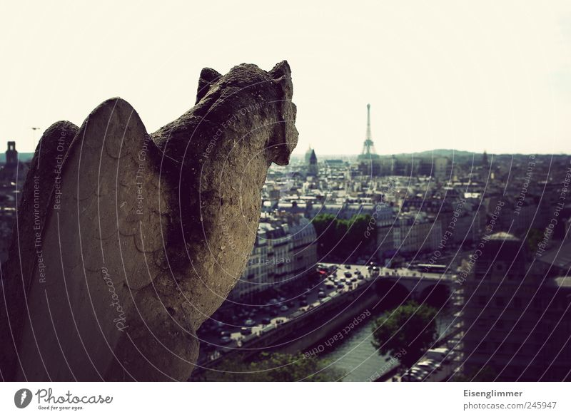 The Eiffel Tower in view Capital city Old town Monument Notre Dame Stone Concrete Aggression Esthetic Dark Hideous Historic Paris France grotesque Handrail