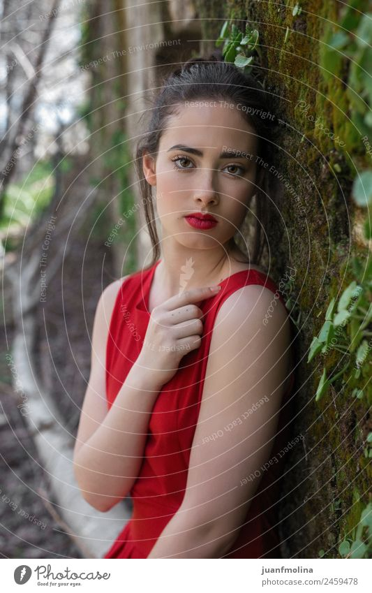 Portrait of girl in red dress Elegant Beautiful Face Make-up Summer Human being Young woman Youth (Young adults) Woman Adults 18 - 30 years Nature Garden
