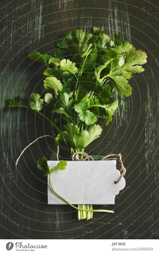 bouquet of fresh coriander or cilantro, price tag Food Vegetable Herbs and spices Nutrition Organic produce Diet Medication Kitchen Plant Leaf Dress Bouquet