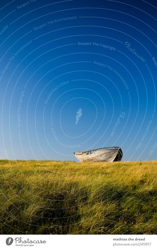 DENMARK - XIII Environment Nature Landscape Cloudless sky Horizon Summer Beautiful weather Wind Plant Grass Moss Meadow Navigation Fishing boat Old Exceptional