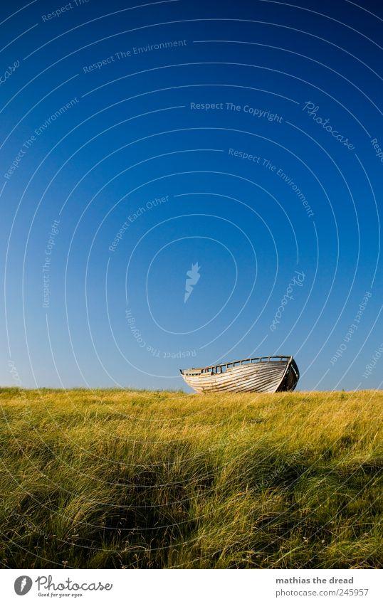 Nature Old Blue Beautiful Plant Summer Calm Meadow Grass Wood Landscape Environment Watercraft Wind Horizon Lie