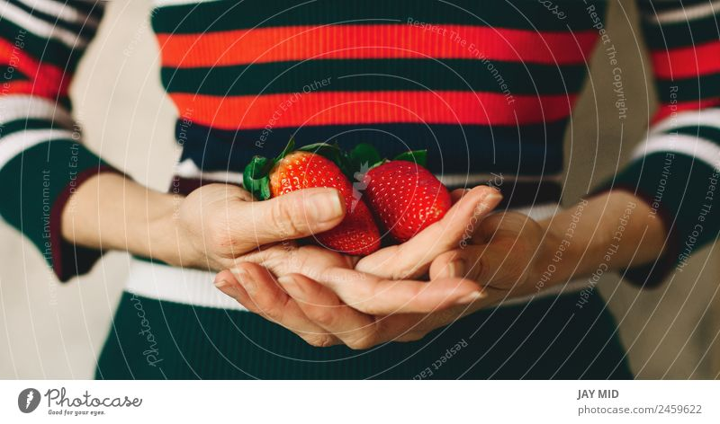 Woman holds strawberries in her hands Fruit Eating Breakfast Vegetarian diet Diet Human being Adults Hand Nature Leaf Dress Fresh Natural Juicy Green Red