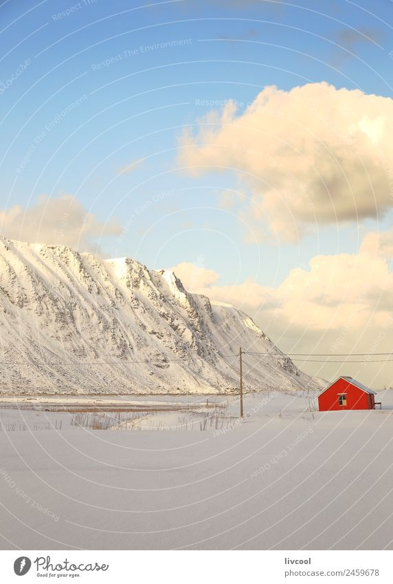 red house-norway Nature Vacation & Travel Blue Landscape White Tree Ocean Red Relaxation House (Residential Structure) Winter Mountain Coast Snow Snowfall