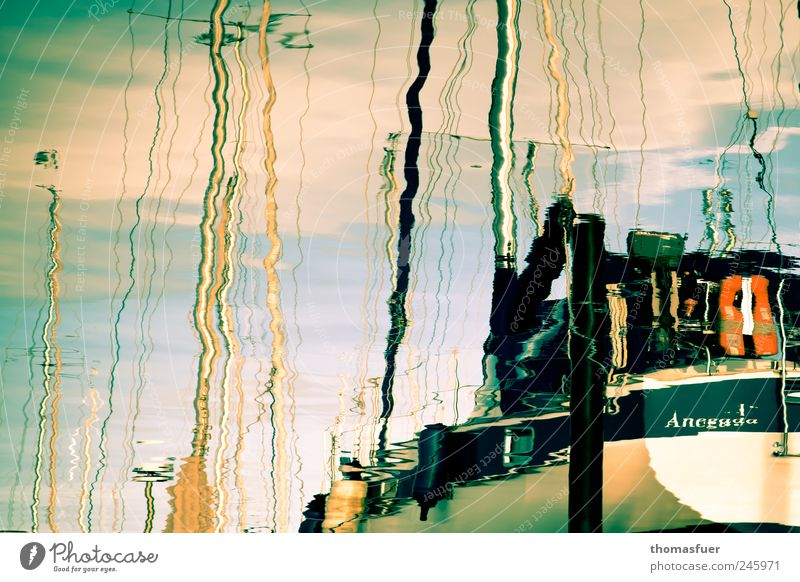 Water Ocean Summer Calm Coast Dream Waves Glittering Rope Romance Plastic Harbour Beautiful weather Baltic Sea Fluid Sailing