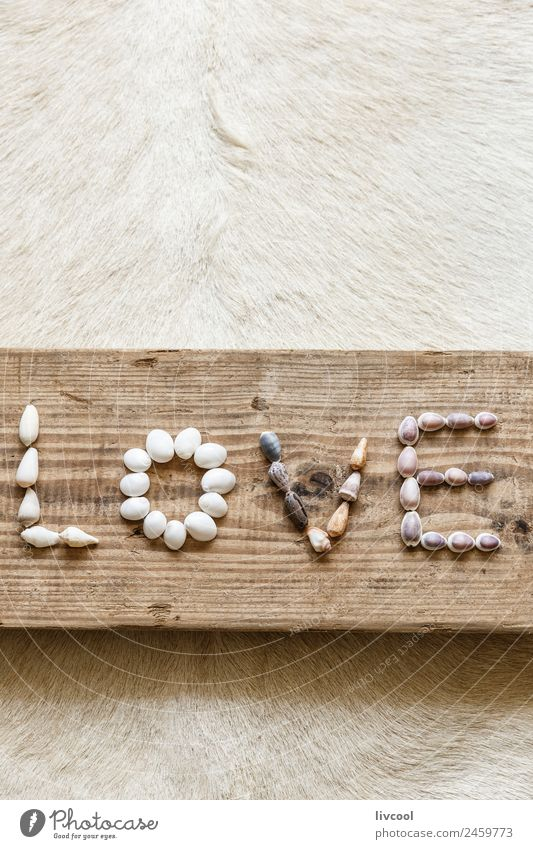 seashells forming the word love Love Emotions Wood Art Table Symbols and metaphors Write Passion Lovers Word Artist Communication Carpet Shell Plank February