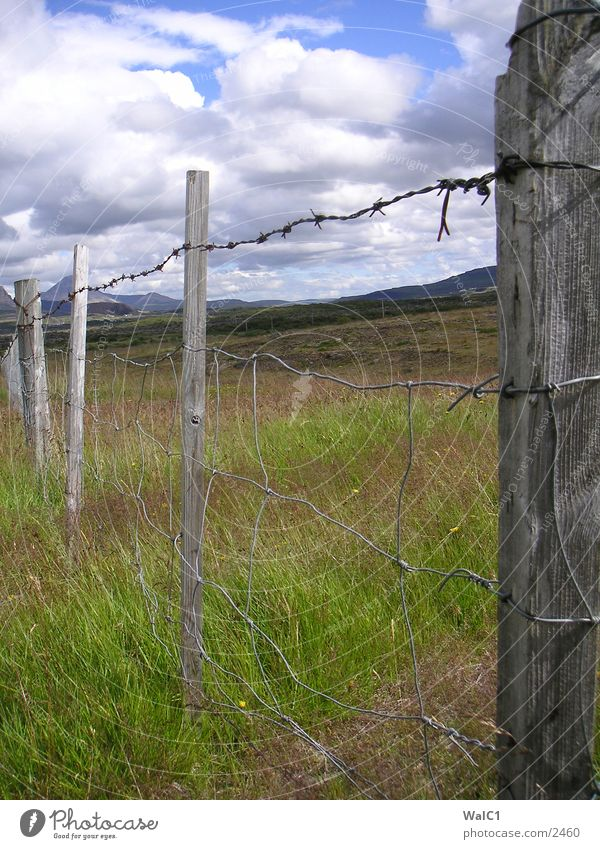 Northern Iceland Fence Barbed wire Clouds Meadow Green Europe Landscape Water