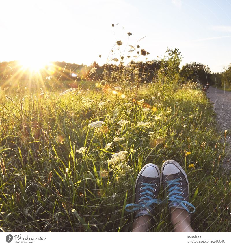 Human being Sky Nature Summer Joy Environment Landscape Meadow Grass Lanes & trails Legs Feet Horizon Field Uniqueness Beautiful weather