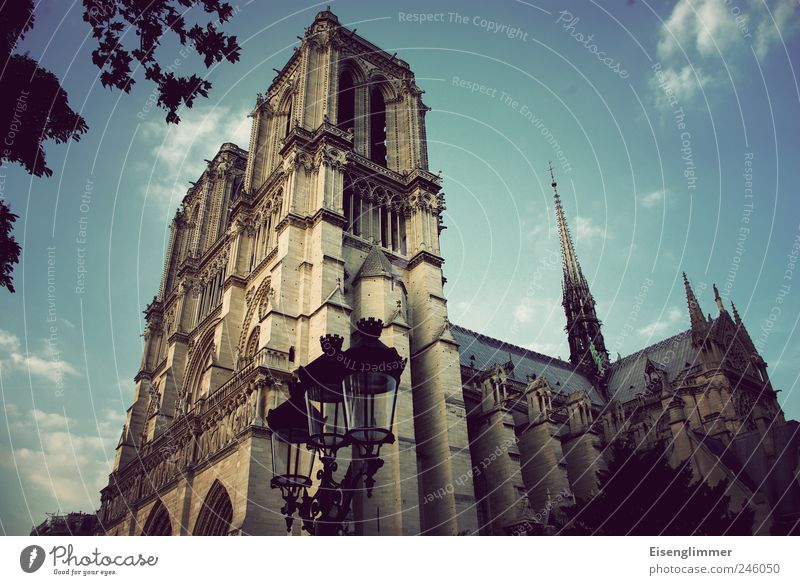 Notre Dame Paris France Manmade structures Architecture Church Tourist Attraction Esthetic Elegant Mysterious Belief Religion and faith Culture Nostalgia