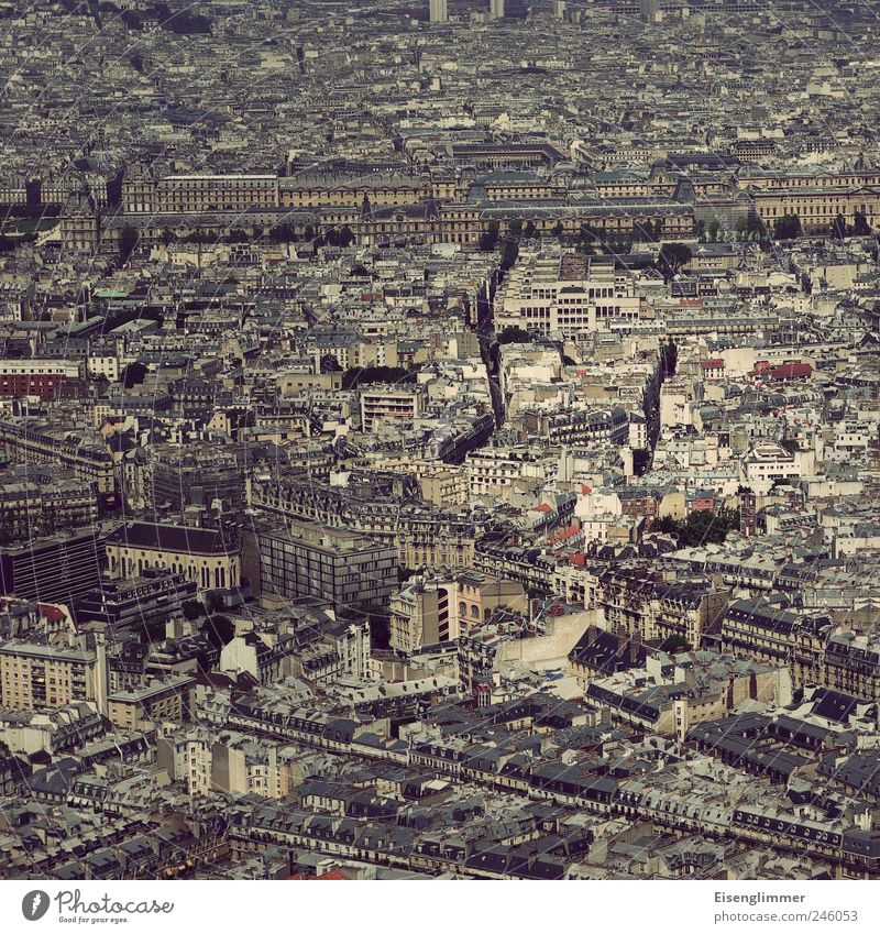 Paris square France Europe Capital city Old town House (Residential Structure) Esthetic Historic Tall Culture Nostalgia Aerial photograph Colour photo