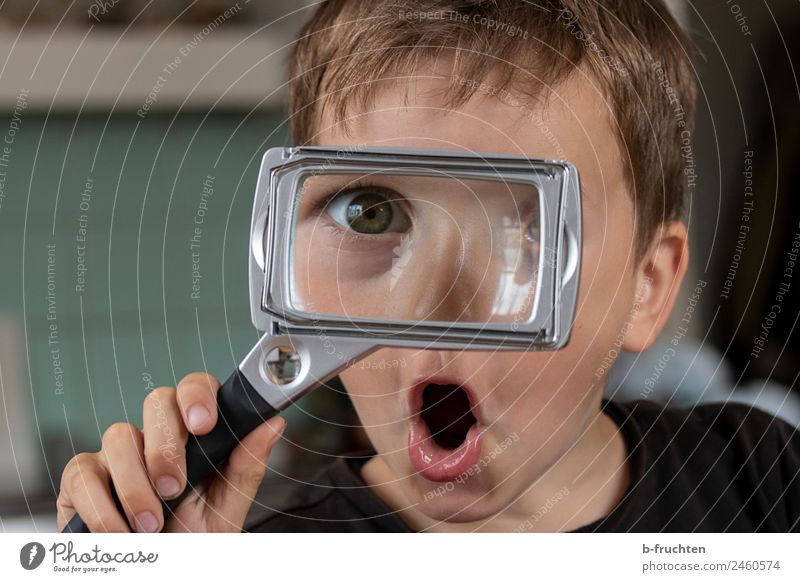 Child Hand Face Eyes Boy (child) Infancy Glass Happiness Adventure Fingers Observe To hold on Select Brash Experience Magnifying glass