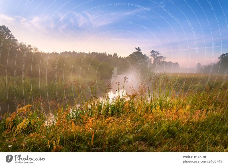 Foggy river in the morning. Summer misty sunrise Sky Nature Vacation & Travel Blue Beautiful Water Green Sun Landscape Tree Red Clouds Forest Autumn Natural