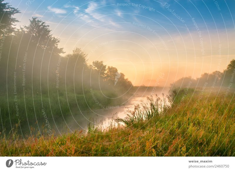 Foggy river in the morning. Summer misty sunrise Sky Nature Vacation & Travel Blue Beautiful Green Sun Landscape Tree Red Clouds Forest Autumn Natural Meadow