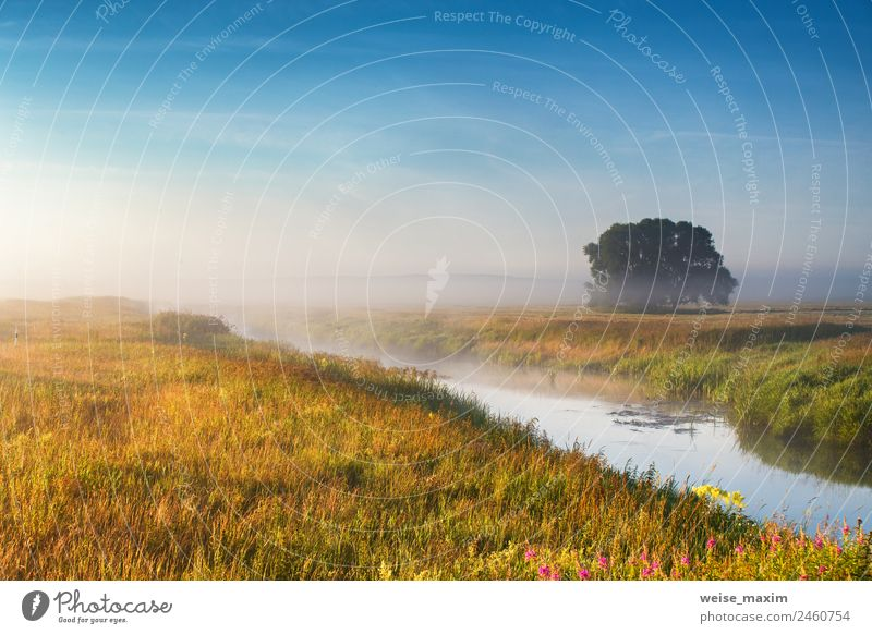 Foggy river in the morning. Summer misty sunrise Sky Nature Vacation & Travel Blue Green Sun Landscape Tree Clouds Autumn Natural Meadow Grass Lake Park