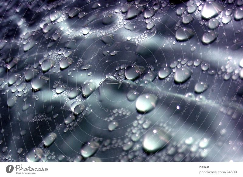 Water Rain Glittering Fresh Illuminate Drops of water Wet Rainwater Drop Damp Lighting effect Dripping Rainwater butt