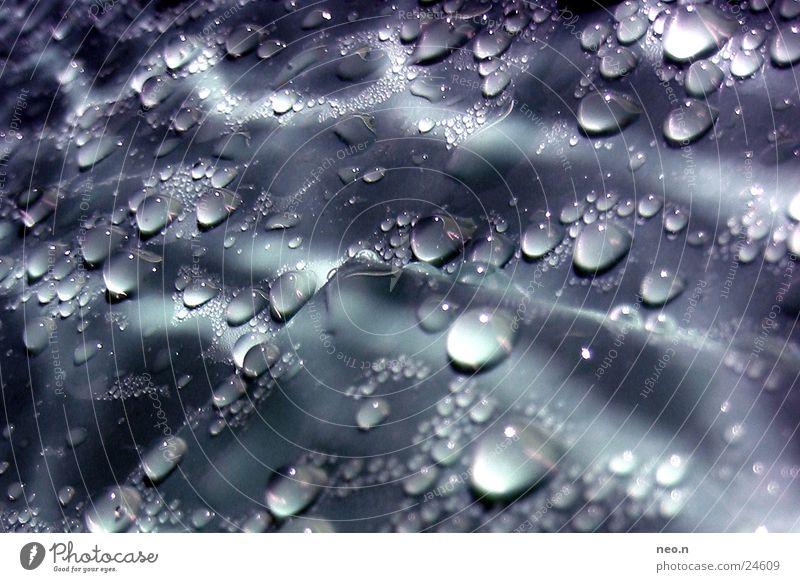 Water Rain Glittering Fresh Illuminate Drops of water Wet Rainwater Damp Lighting effect Dripping Rainwater butt