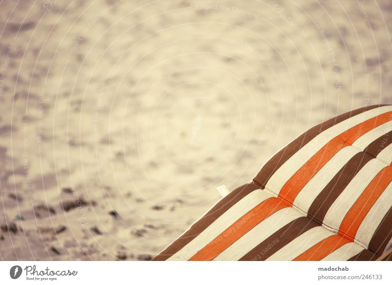 Joy Summer Beach Loneliness Freedom Emotions Happy Sand Moody Brown Orange Contentment Energy Leisure and hobbies Happiness Esthetic