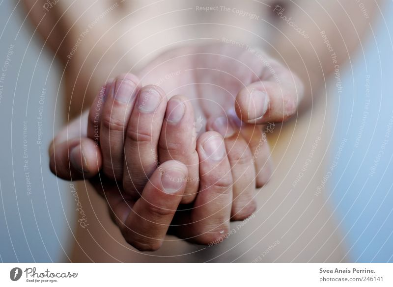 in vain, the sick hands. Masculine Skin Arm Hand Fingers 1 Human being Wall (barrier) Wall (building) To hold on Cold Passion Hope Belief Contentment Desire